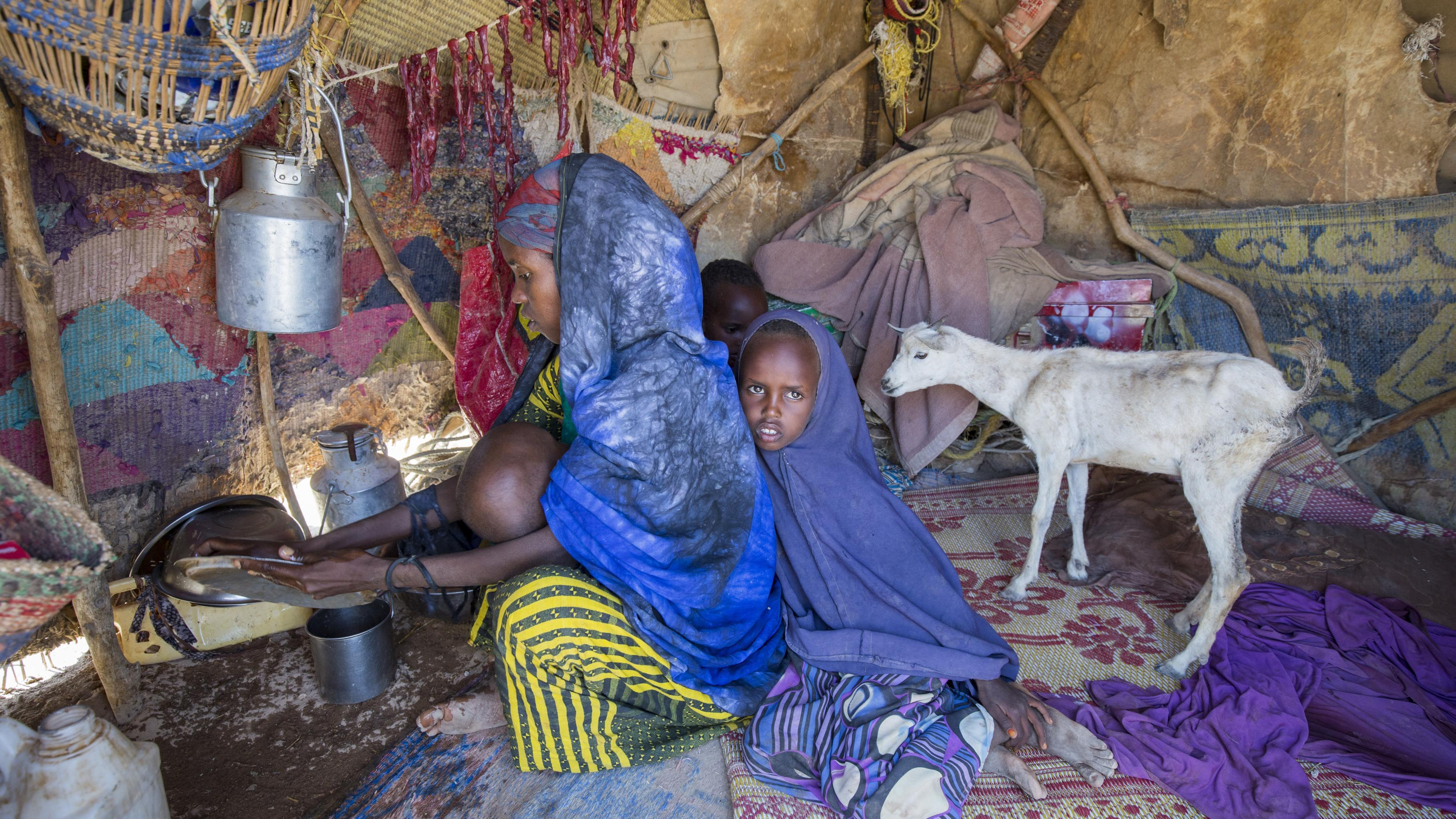 Eine Frau sitzt mit drei kleinen kIndern und einer Ziege in einer notdürftigen Unterkunft aus zusammengelegten Teppichen