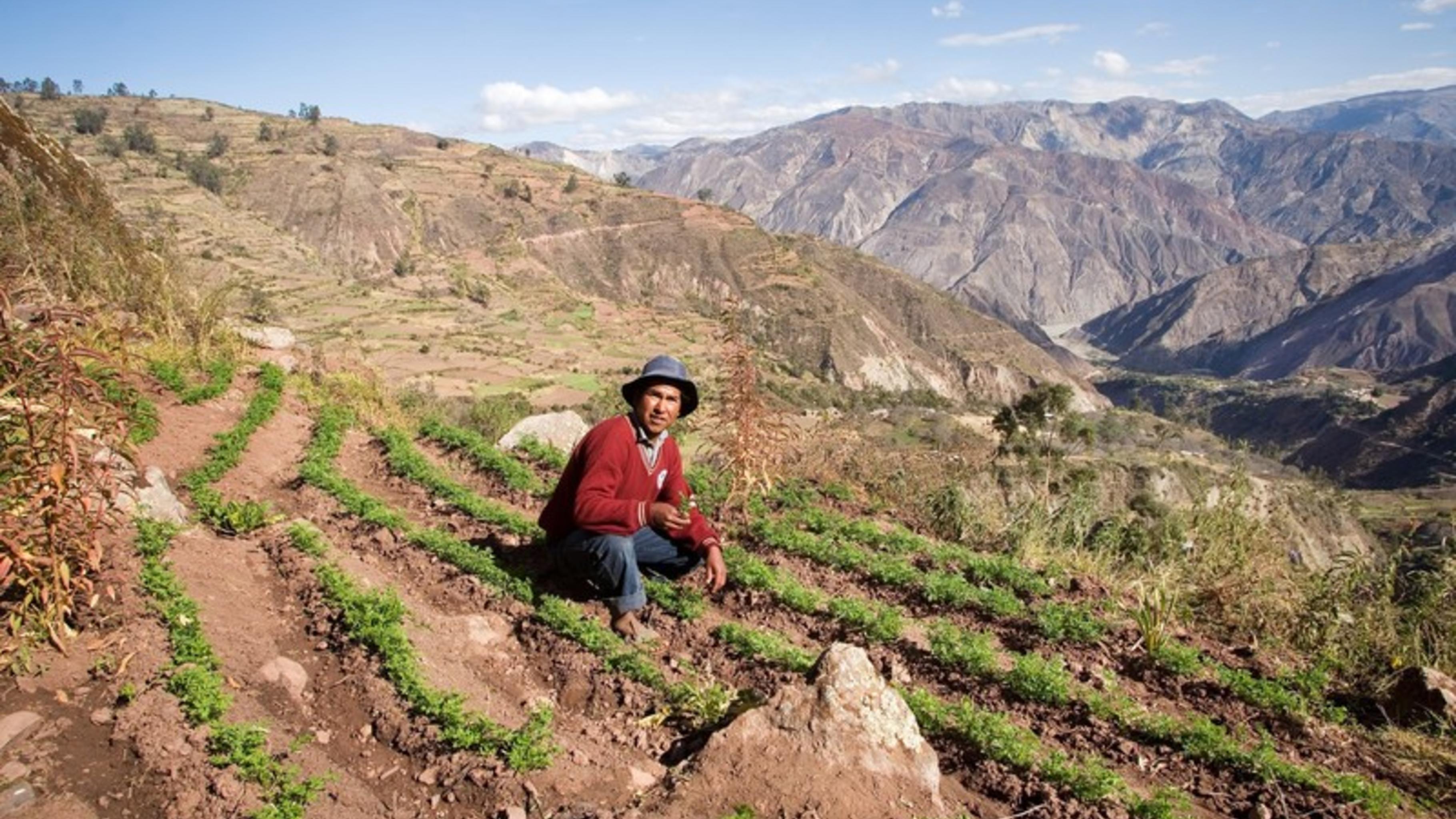 In Khapi brauchen die Bauern das Schmelzwasser des Illimani für ihre Felder.