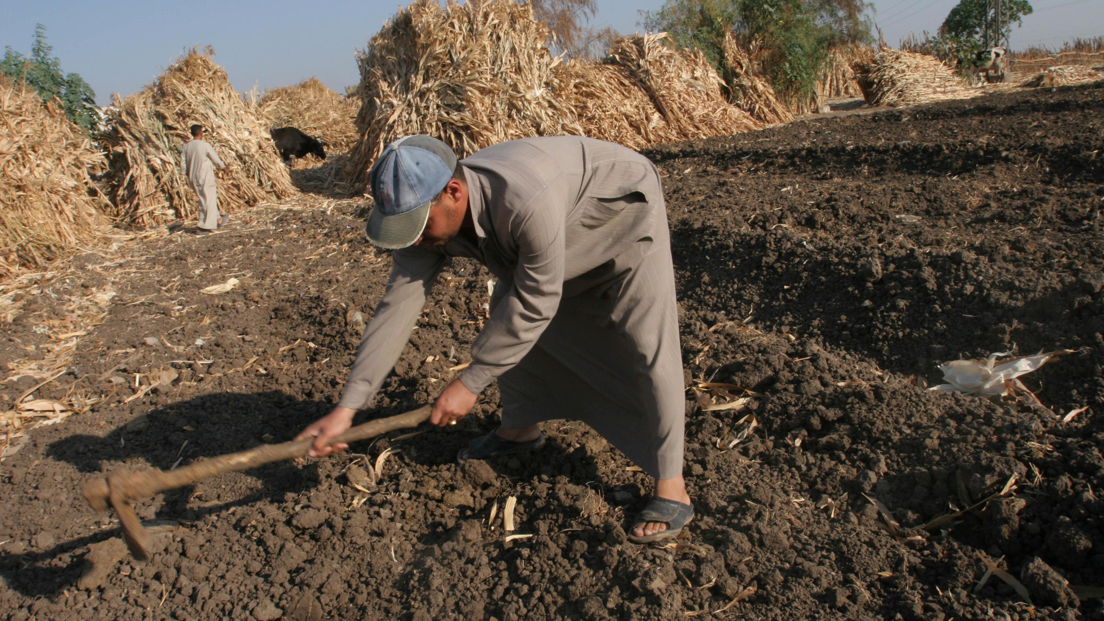 Größere Ernten durch Anbaumethoden, die die Bodenfruchtbarkeit verbessern. © Kar