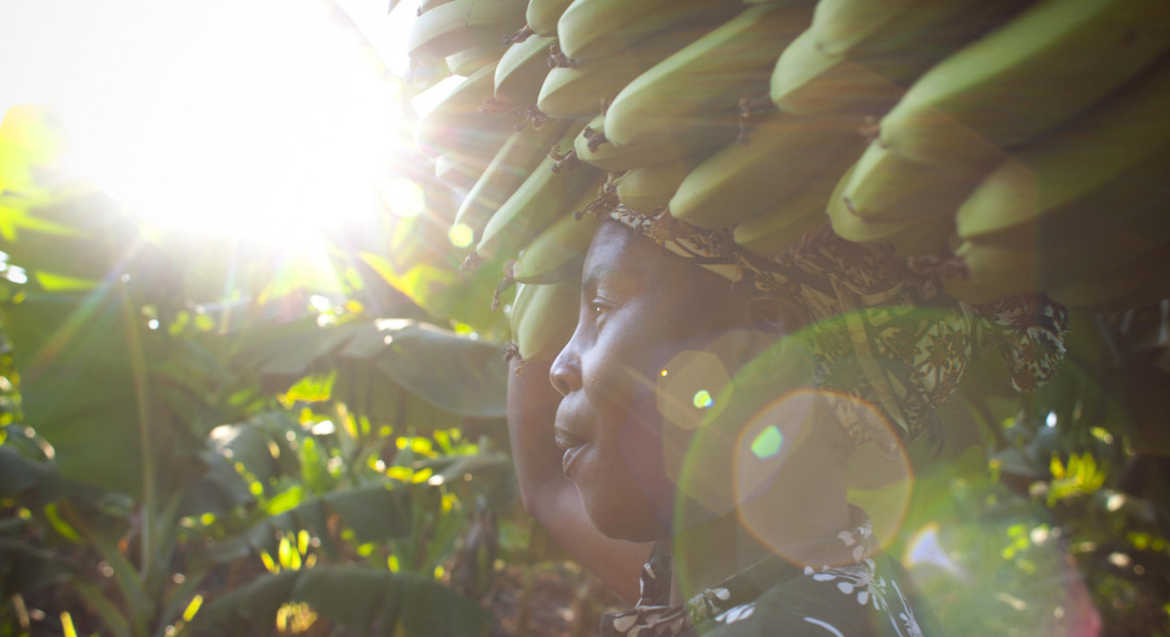 Kleinbäuerin trägt Bananen