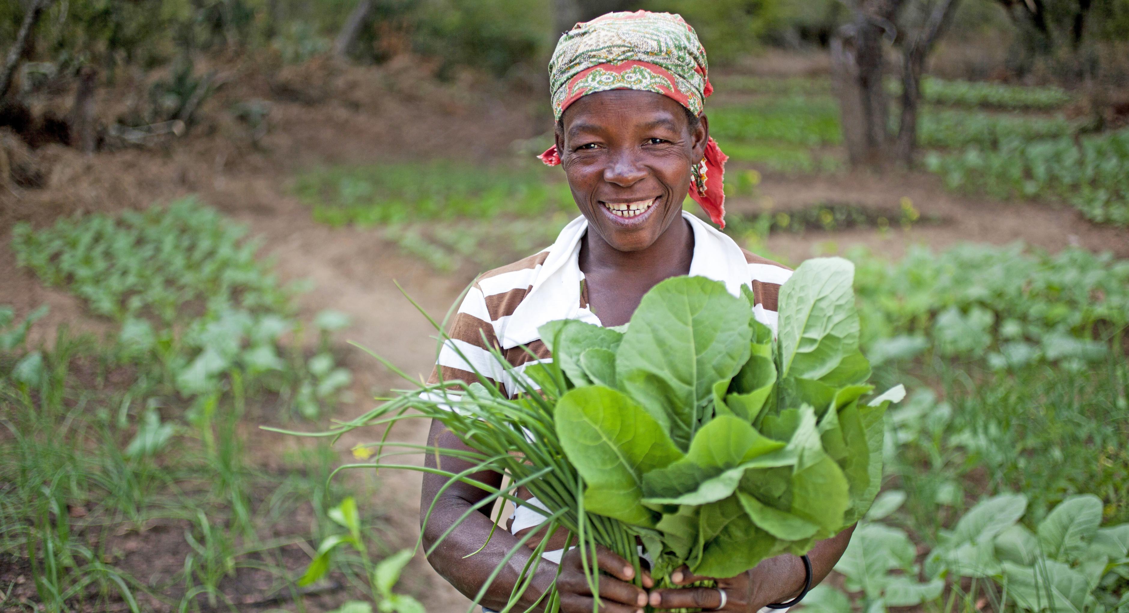 Ern hrung sichern for Oxfam spenden