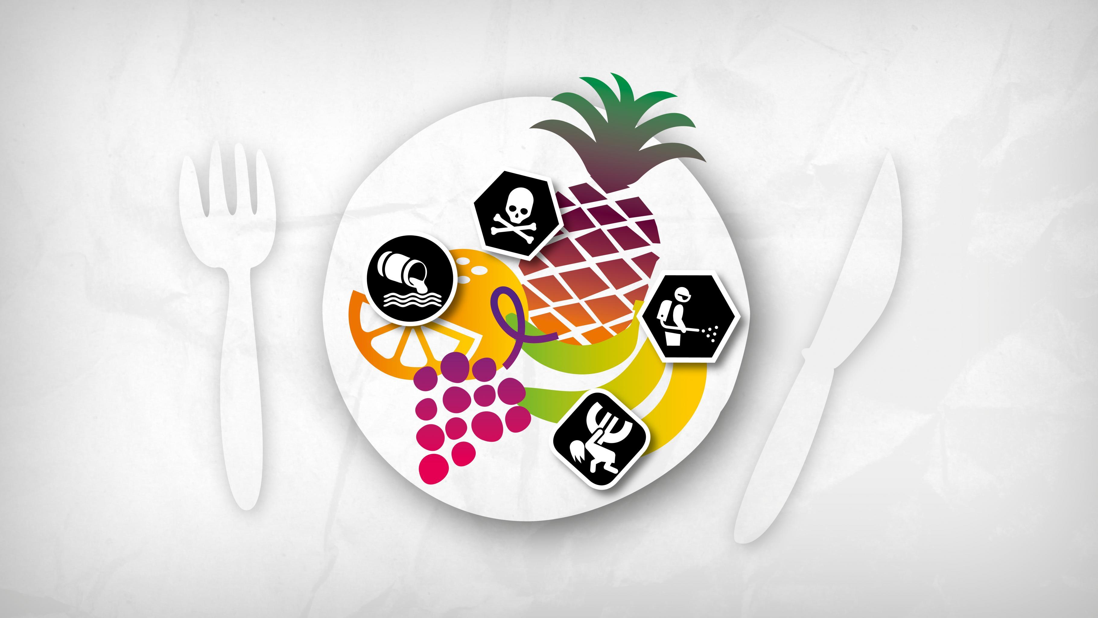 Ein Frühstücksteller mit Früchten