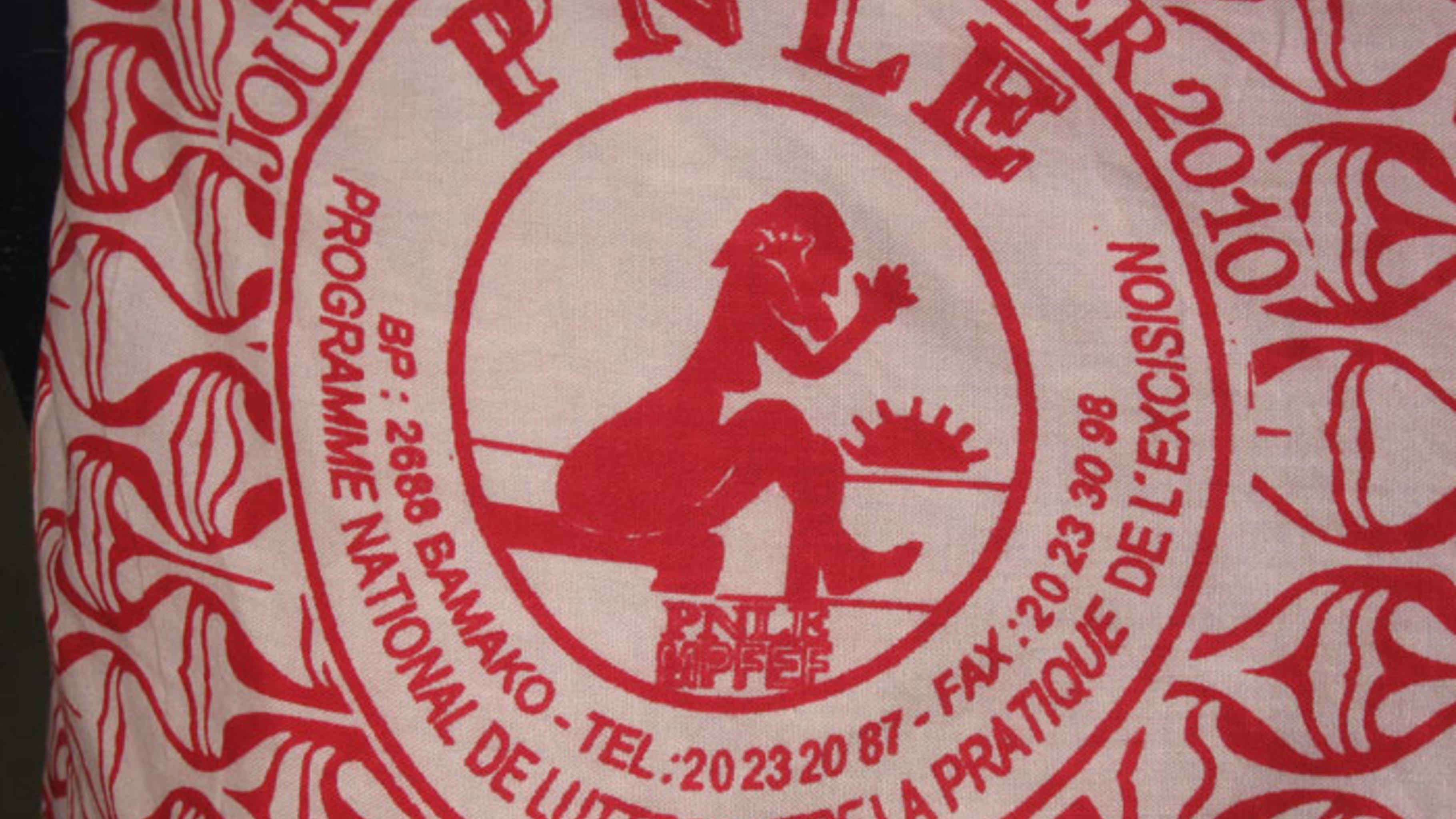 """Foto: Das Emblem des """"PNLE""""."""