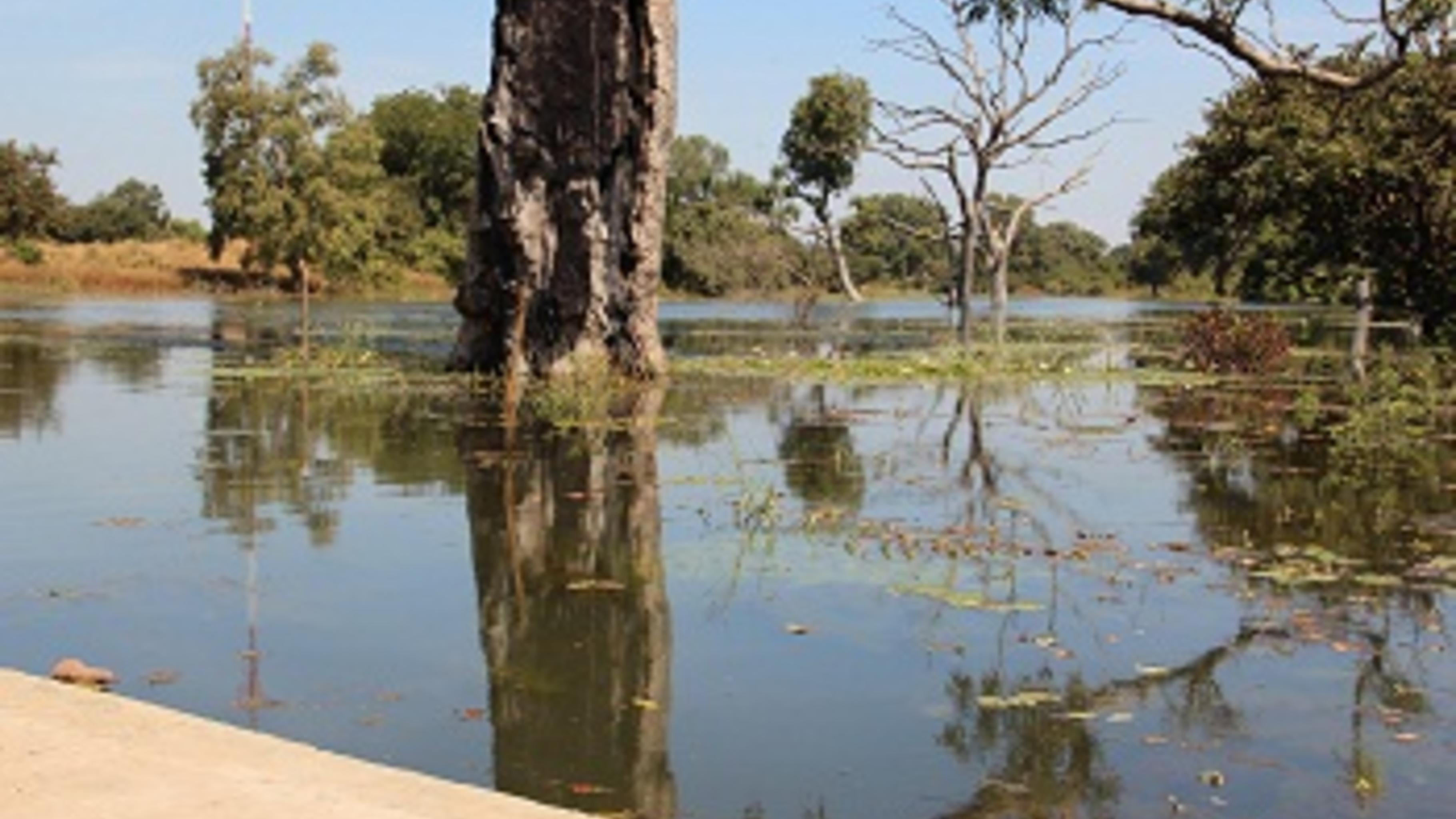 Mit dem Damm wird das Wasser eines Bachs gestaut. ©Svenja Koch/Oxfam