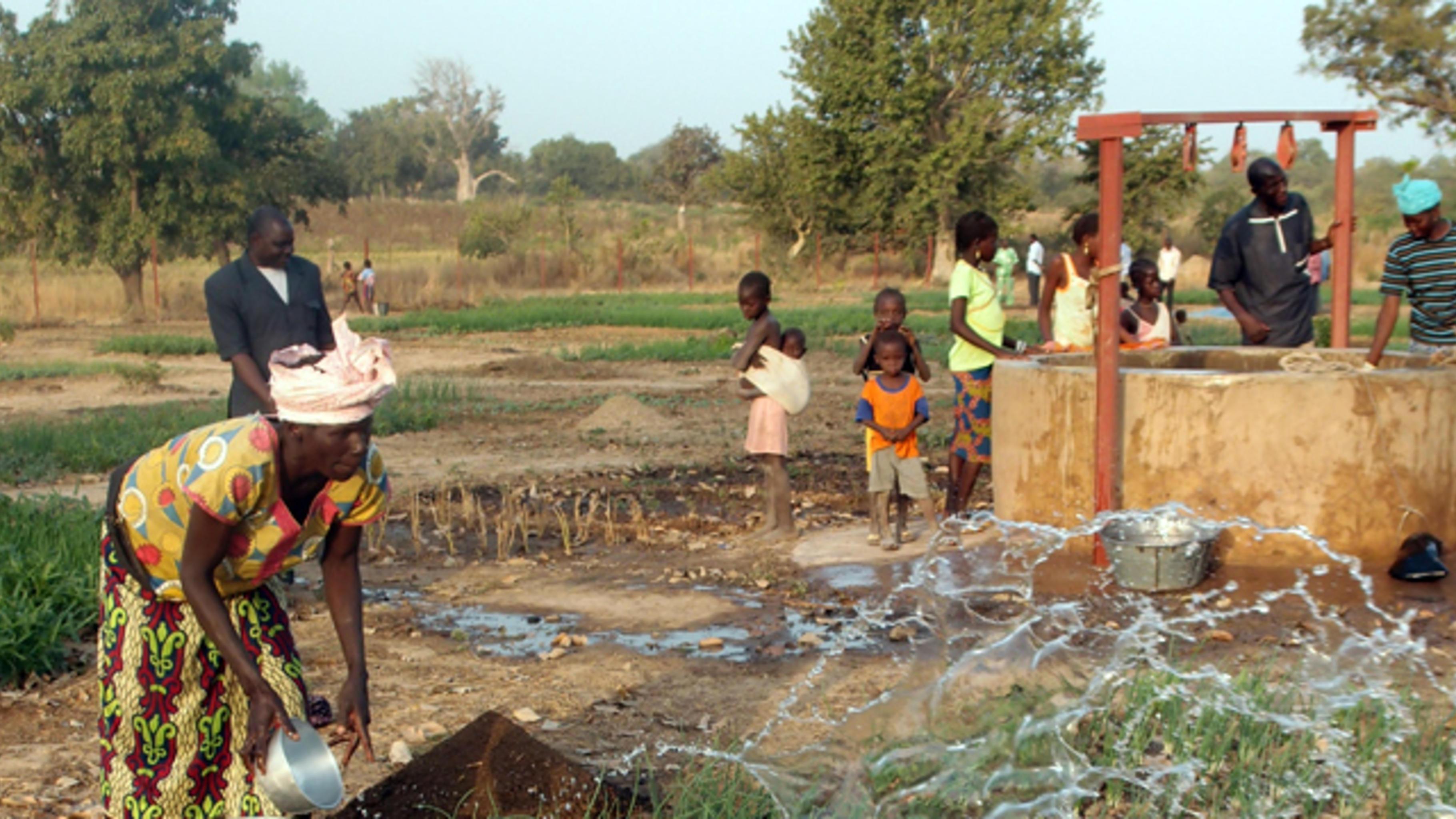 Frauen aus Kounsama im Landkreis Kita bei der Arbeit im Gemeinschaftsgarten.