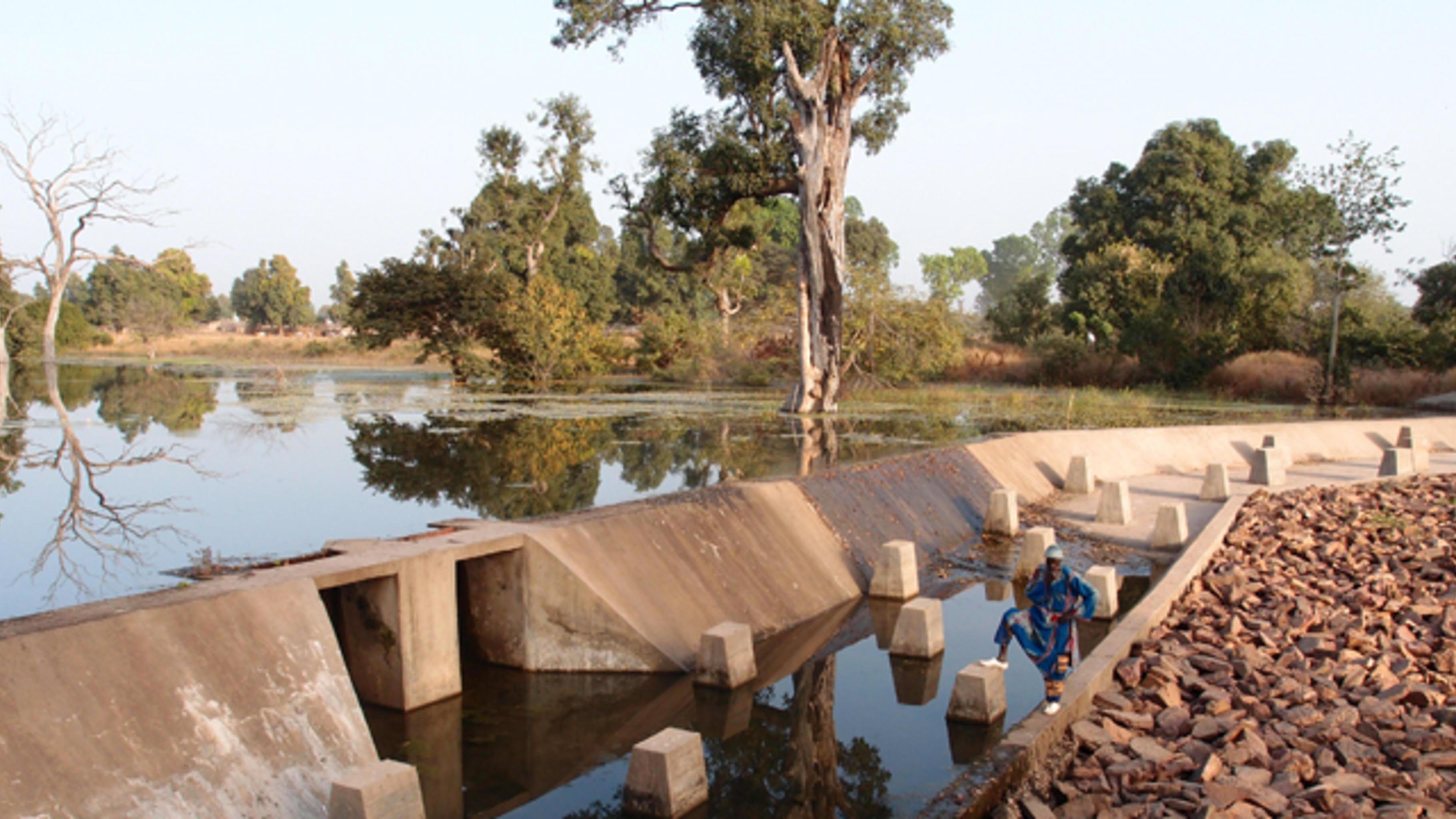 Das Wasserrückhaltebecken in Balandougou mit üppiger Vegetation.