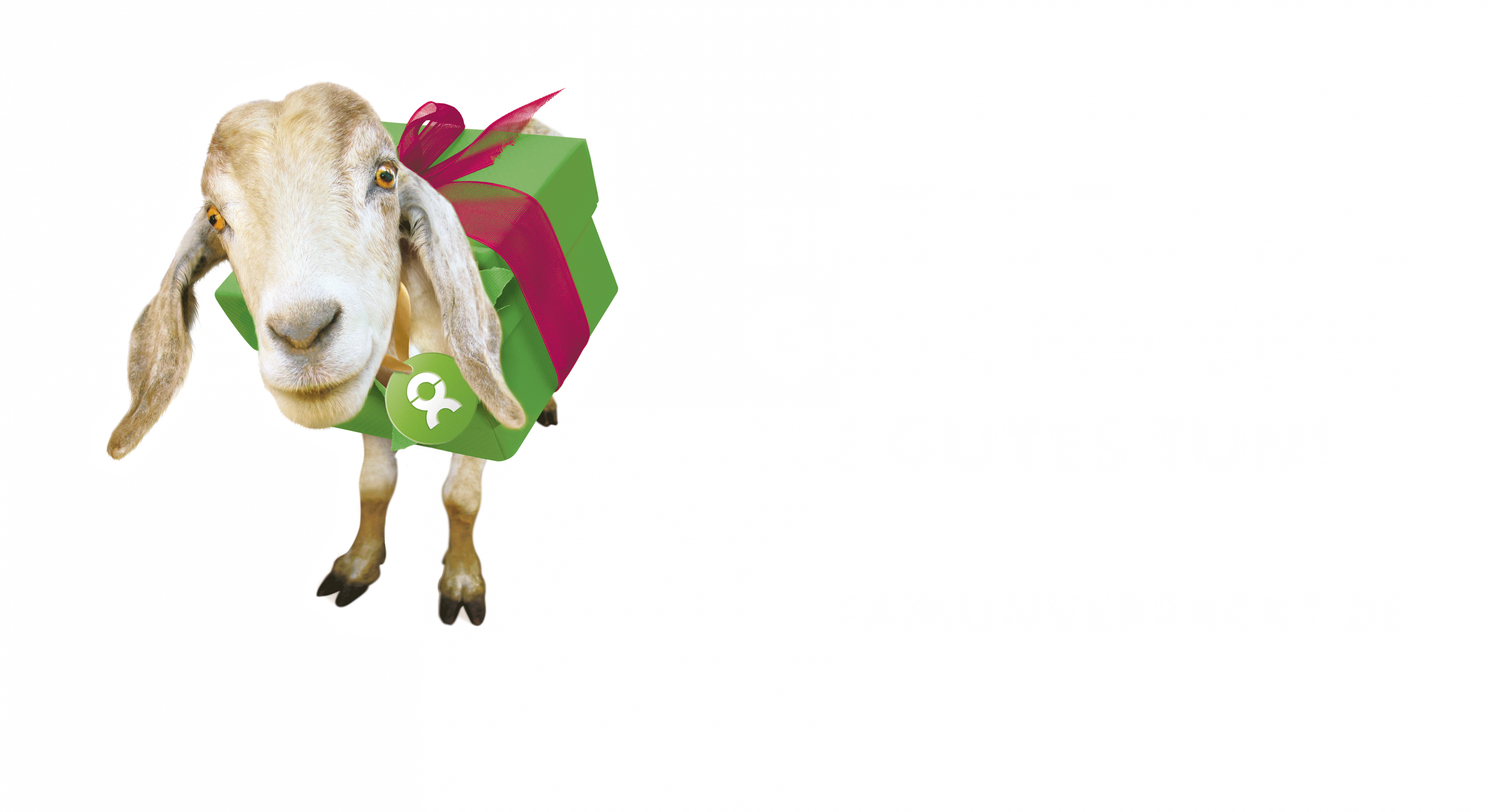 EinZIEGartige Geschenke, die Gutes tun! OxfamUnverpackt.de