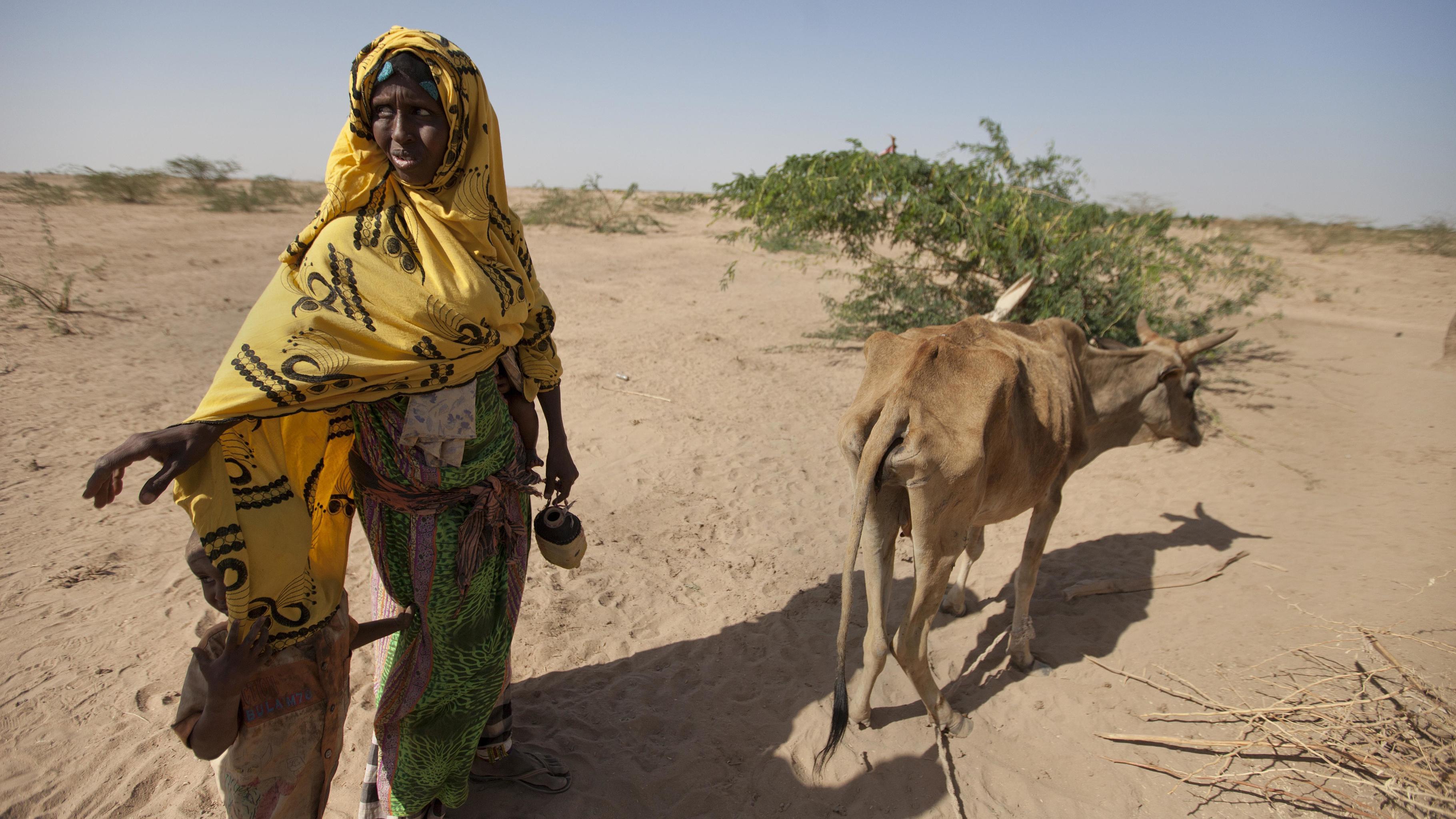Habodo Gele mit der letzten Kuh, die die Dürre überlebt hat.