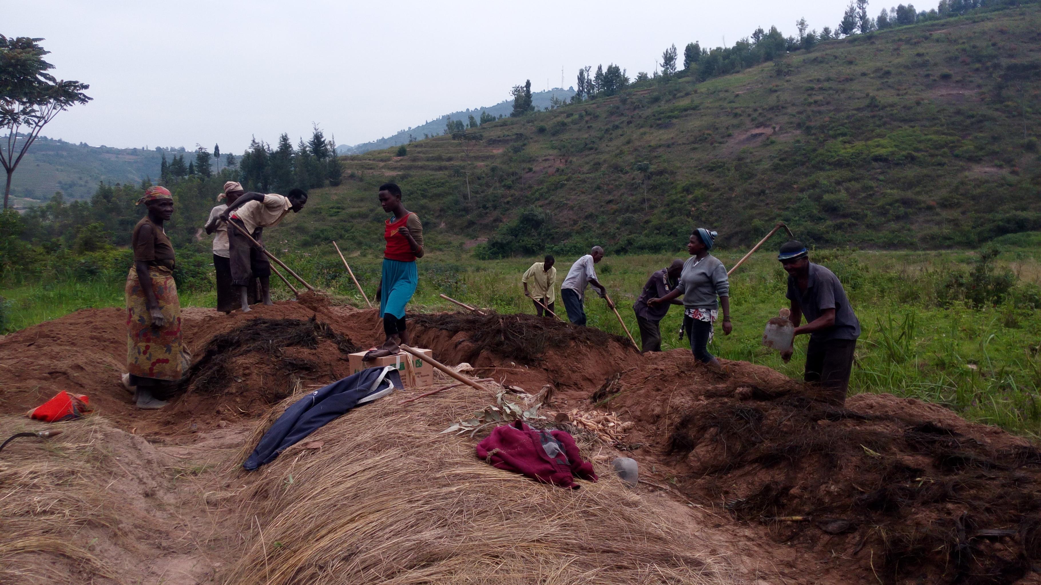 Kleinbauern und –bäuerinnen einer Kooperative in Cyan bestellen ihr Feld.