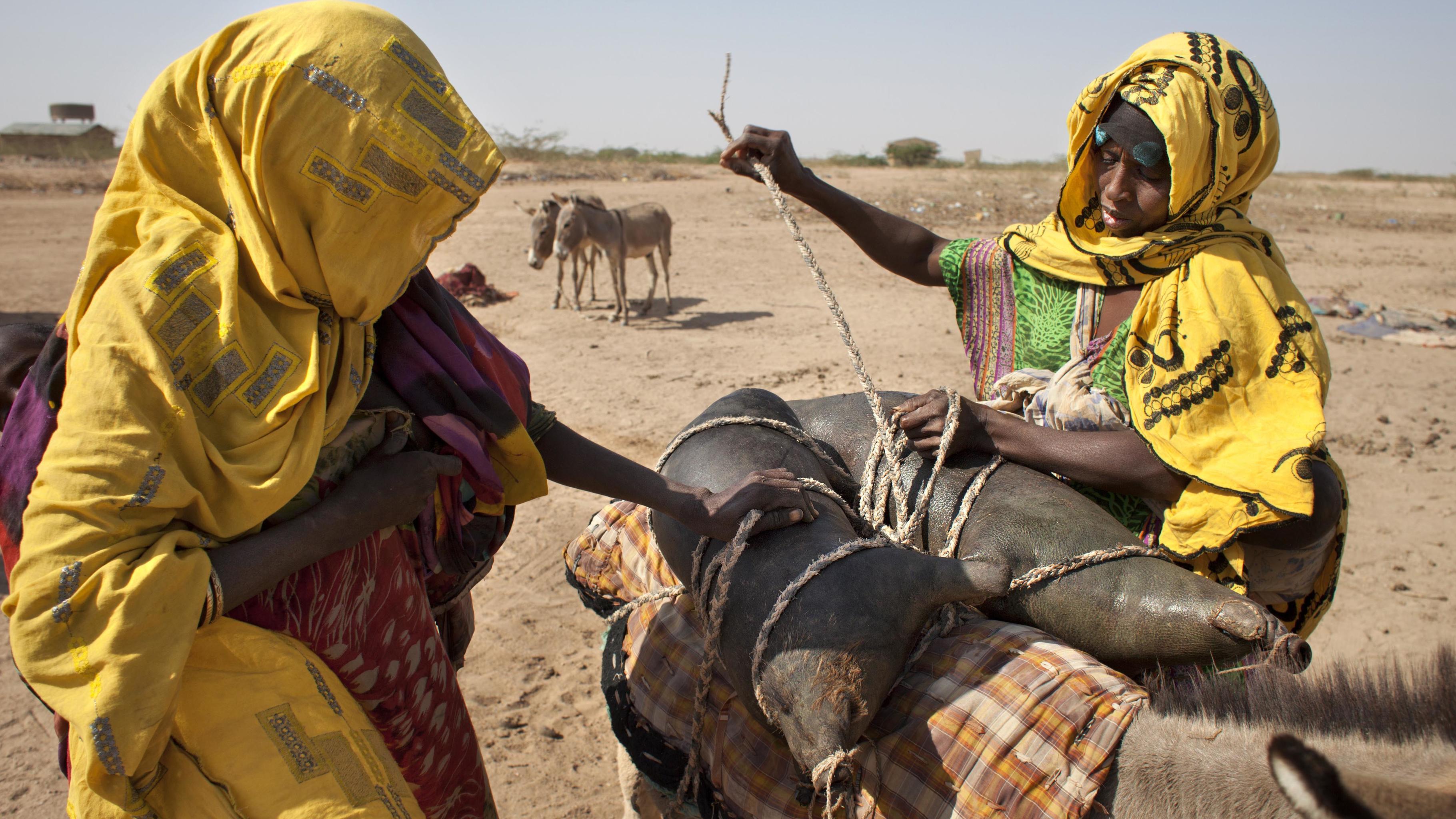 Habodo Gele und ihre Nachbarin beladen einen Esel mit Behältern aus Ziegenhaut