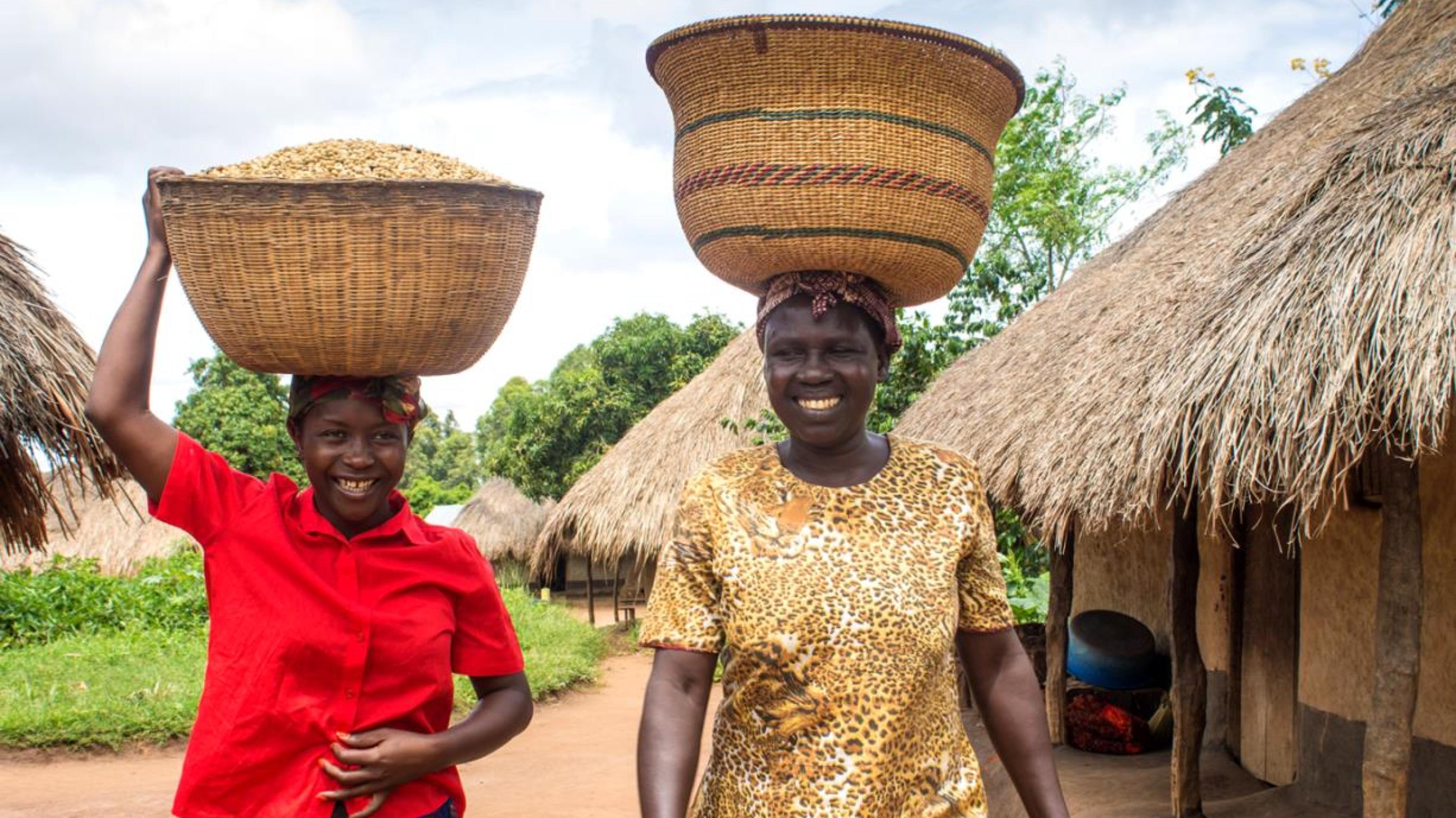 Kaffeebäuerinnen in Uganda