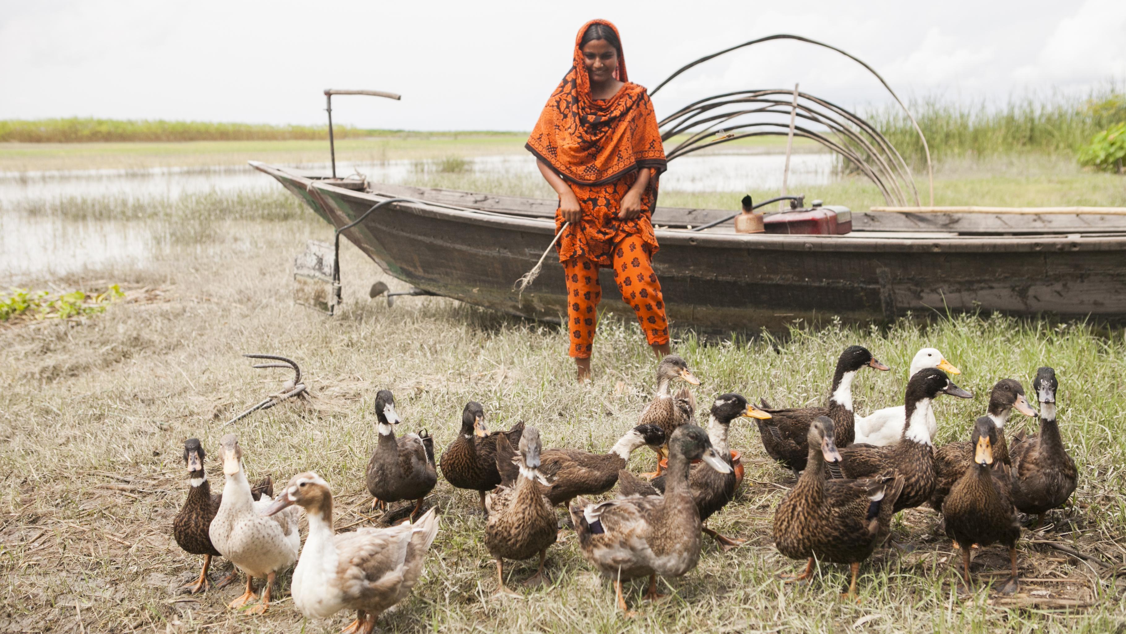 In Bangladesch, im Distrikt Shariaptur, erhalten Frauen eine kleine Entenfamilie. Die Muttertiere bilden mit ihrem Nachwuchs den Grundstock für eine neue Entenzucht und damit eine stabile Einkommensquelle. Mit dem Verkauf der Küken finanzieren die Frauen zum Beispiel die Schulgebühren ihrer Kinder.