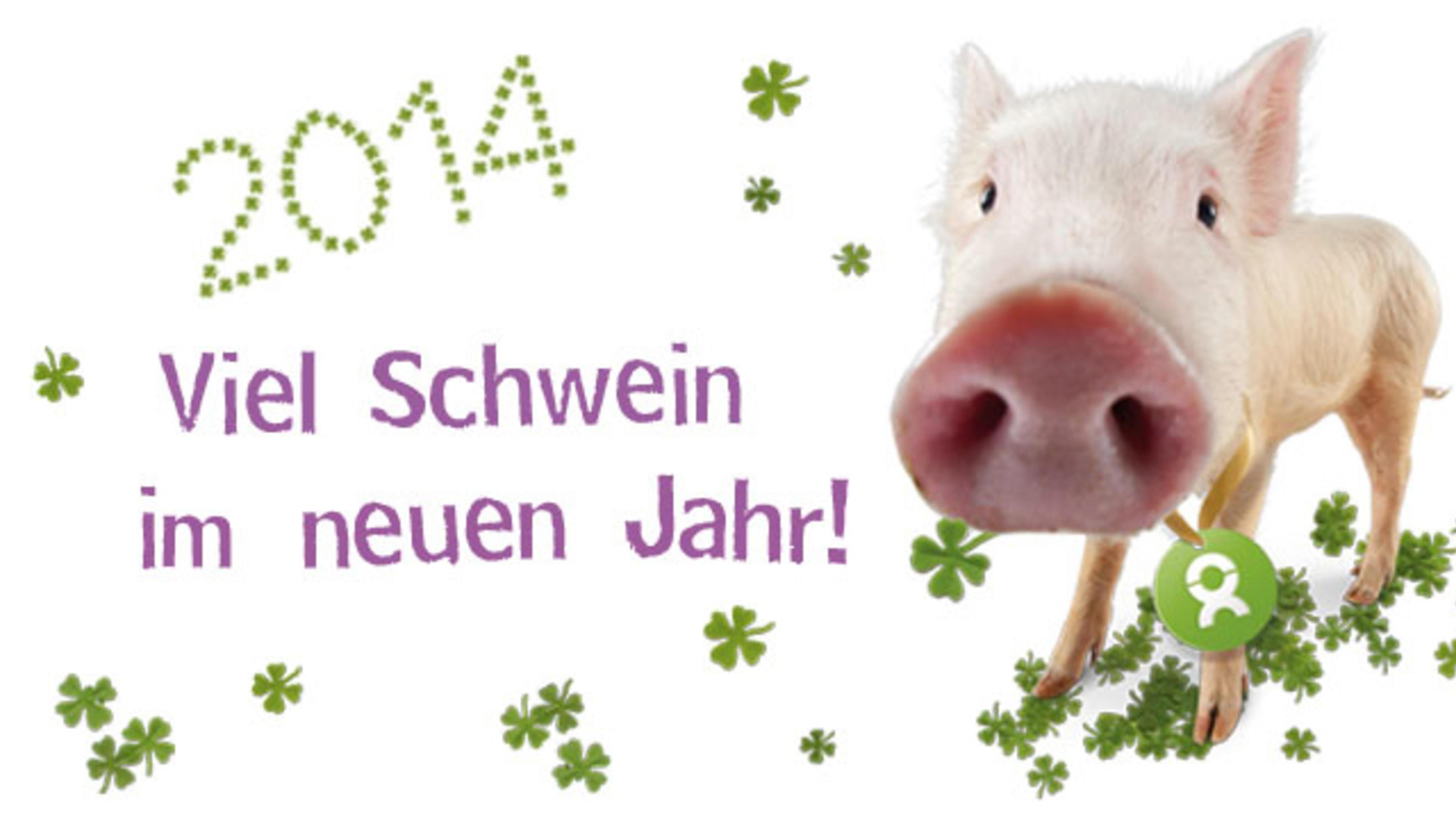 2014: Viel Schwein im neuen Jahr!
