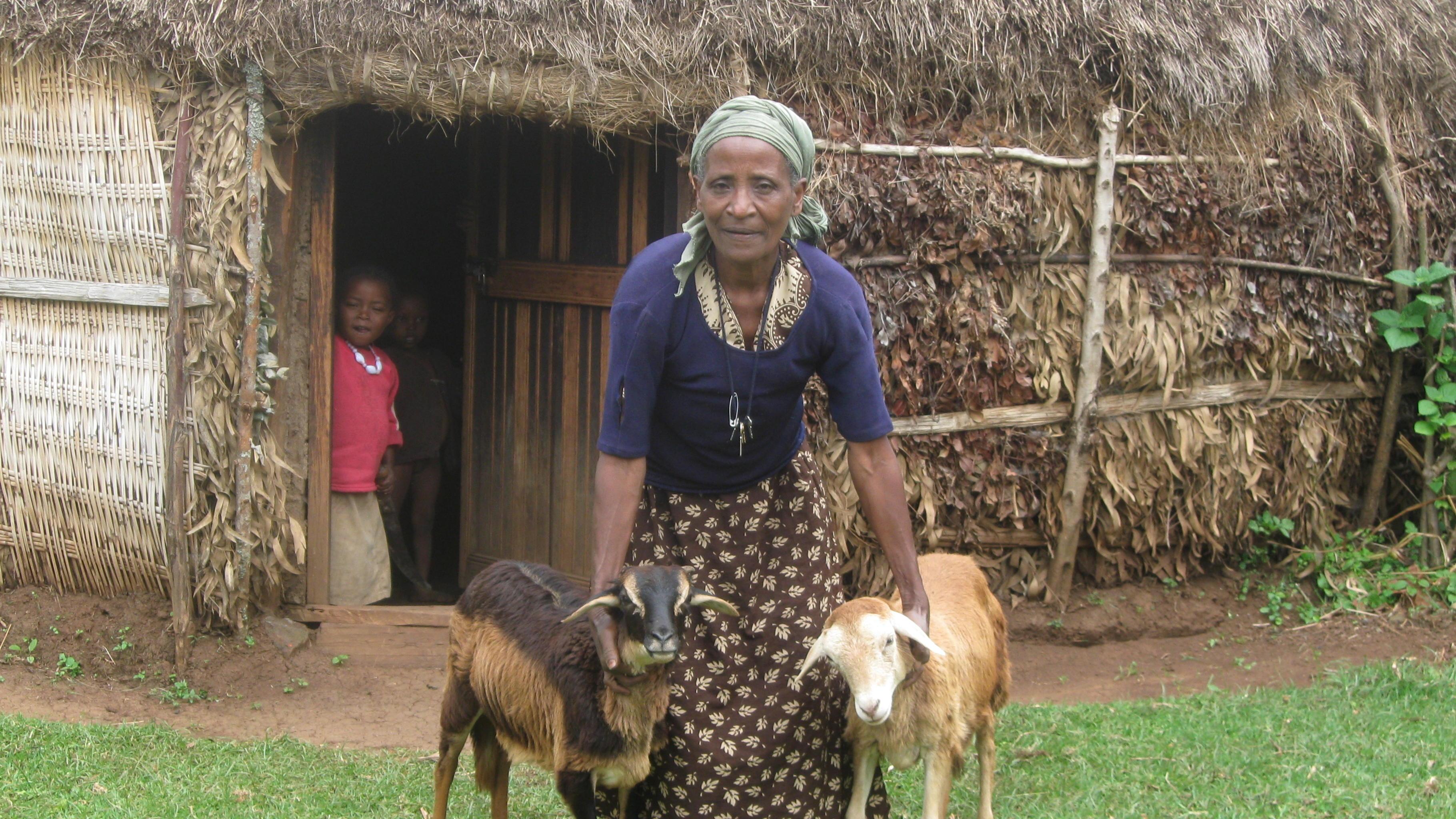 Oxfam Projekt in Äthiopien: Frau mit Ziegen