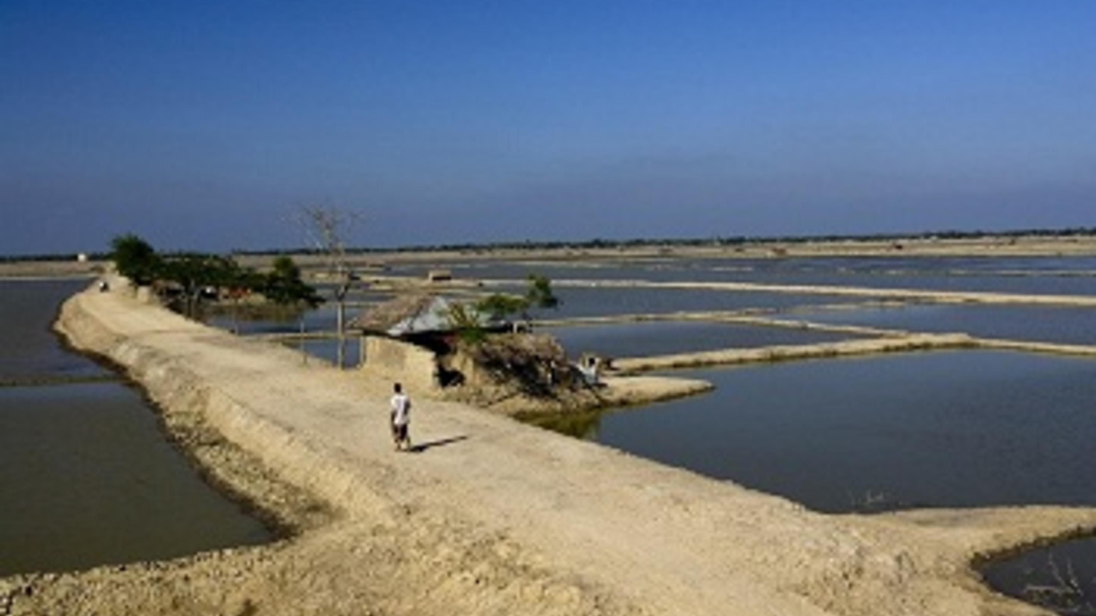 Neu angelegte Becken für die Garnelenzucht auf ehemaligen Feldern.