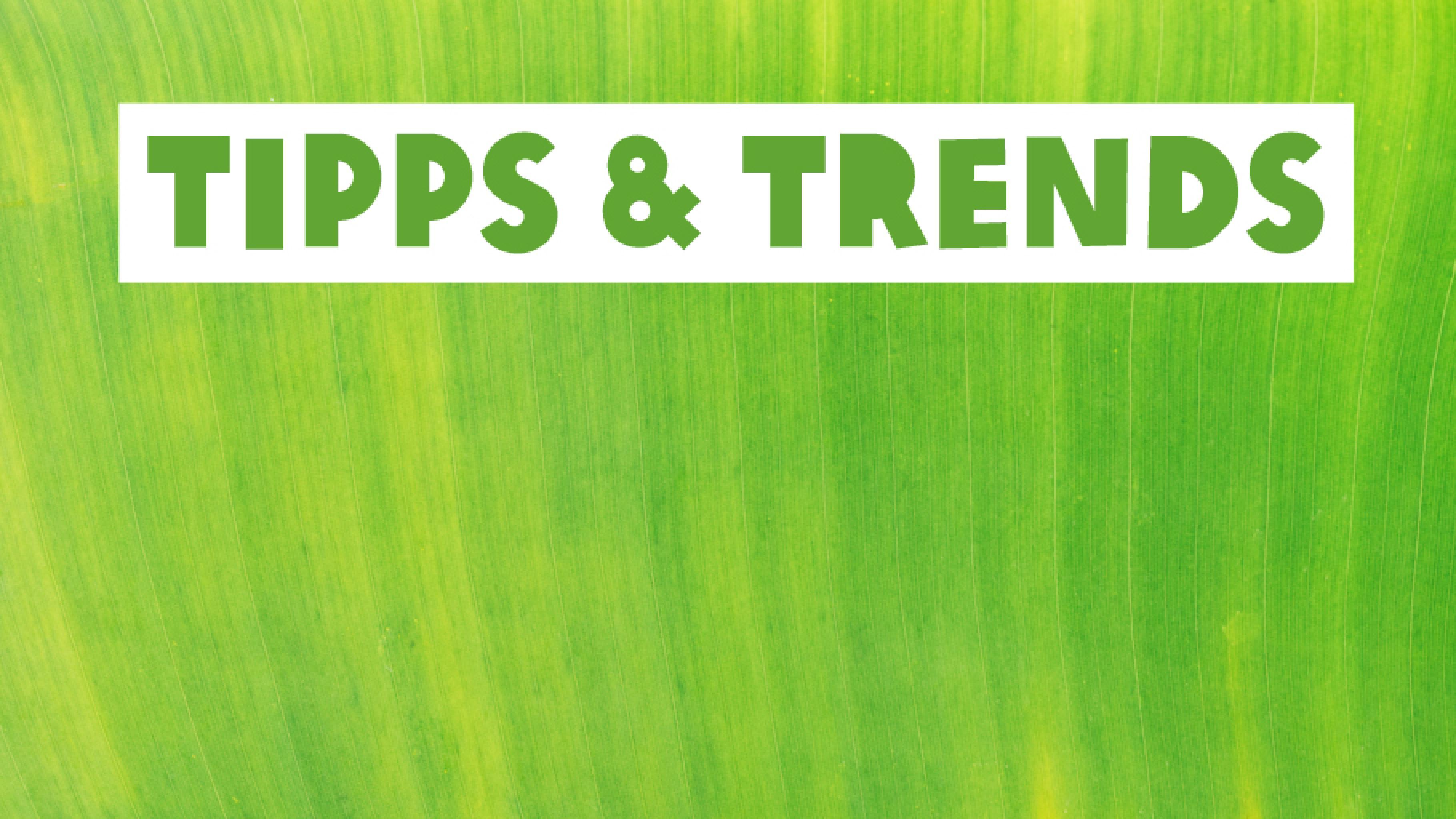 Tipps und Trends