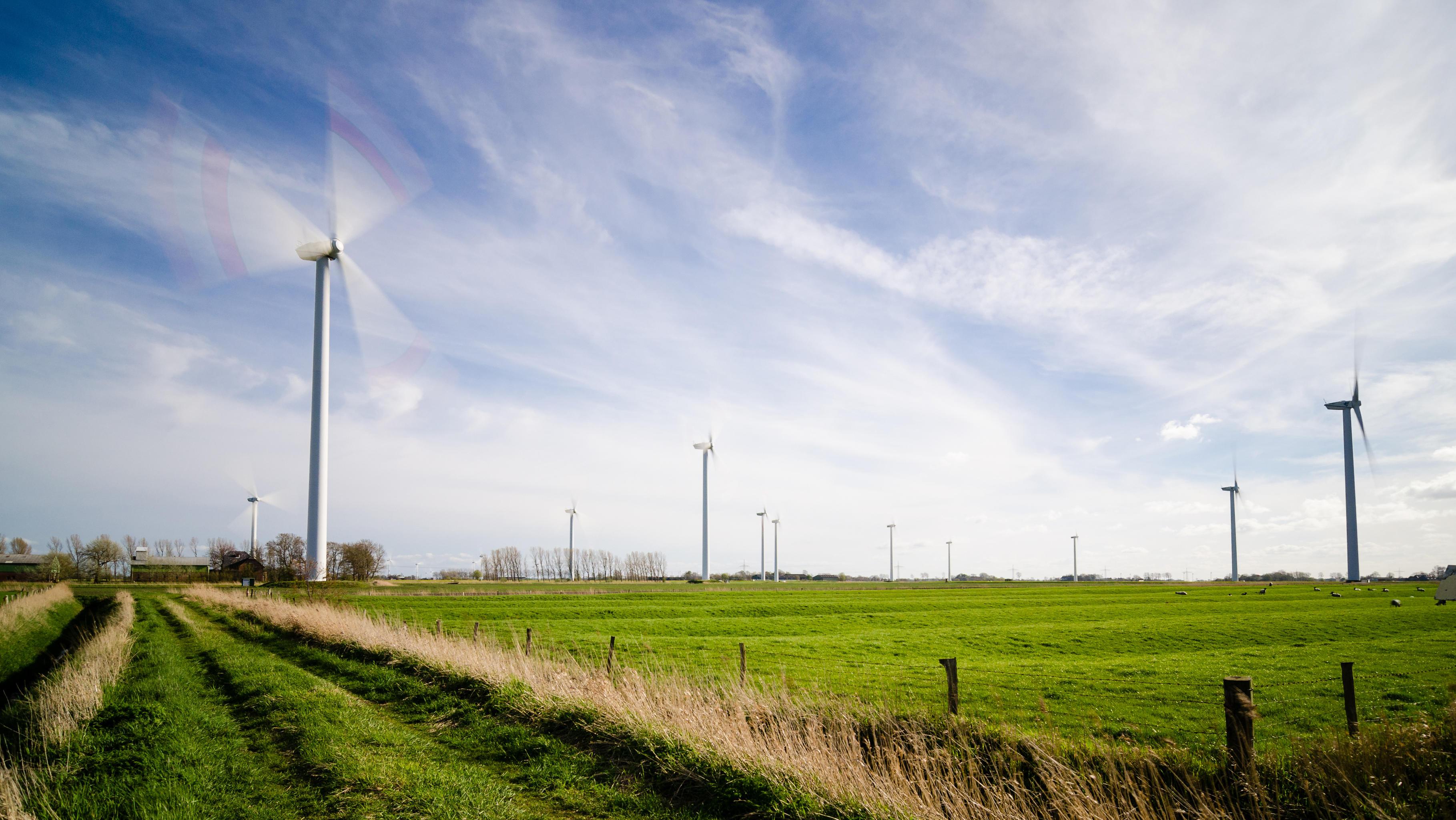 Windräder zwischen satt grünen Feldern