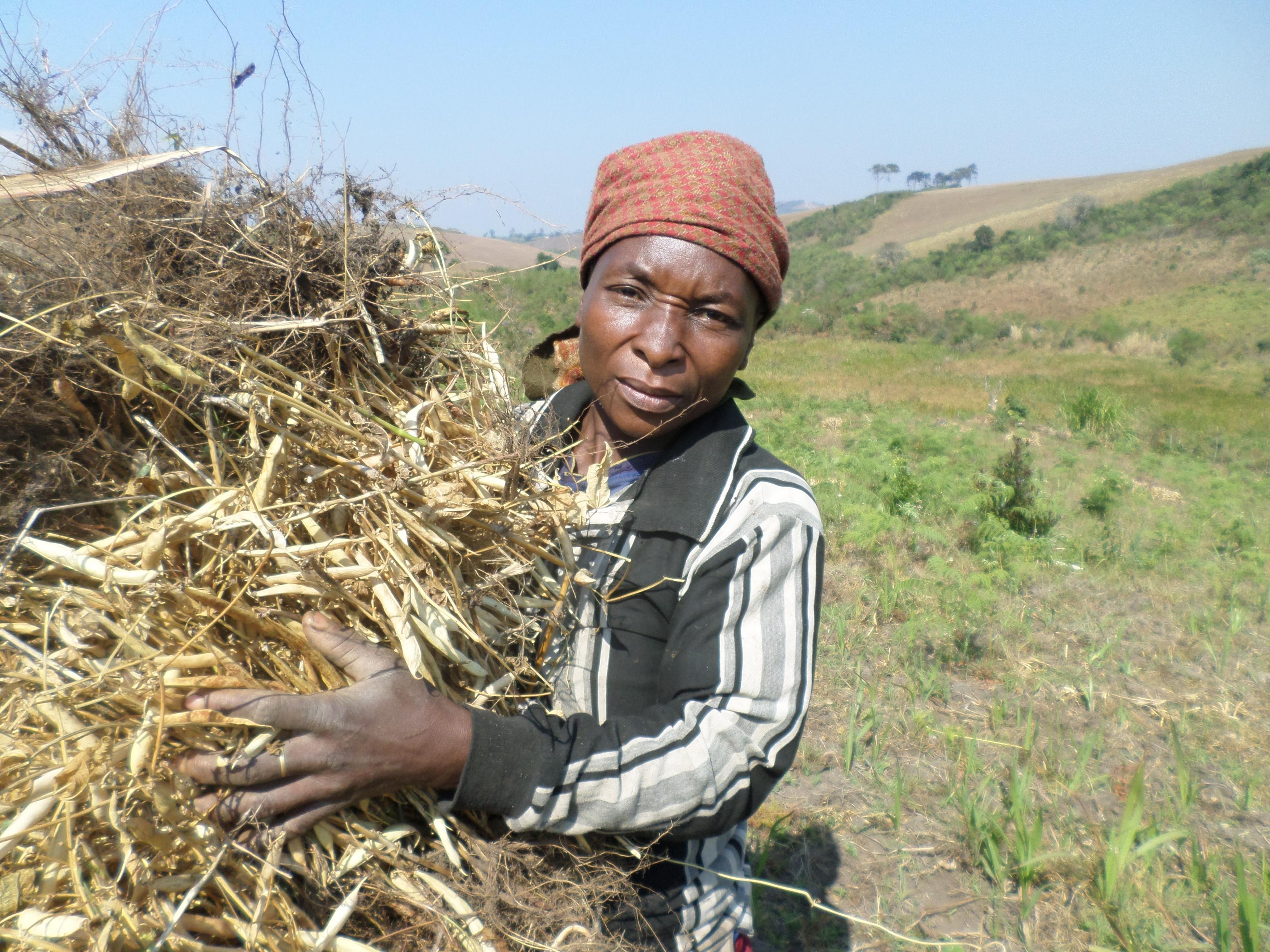 Eine Frau bei der Feldarbeit auf dem Hochplateau von Minembwe