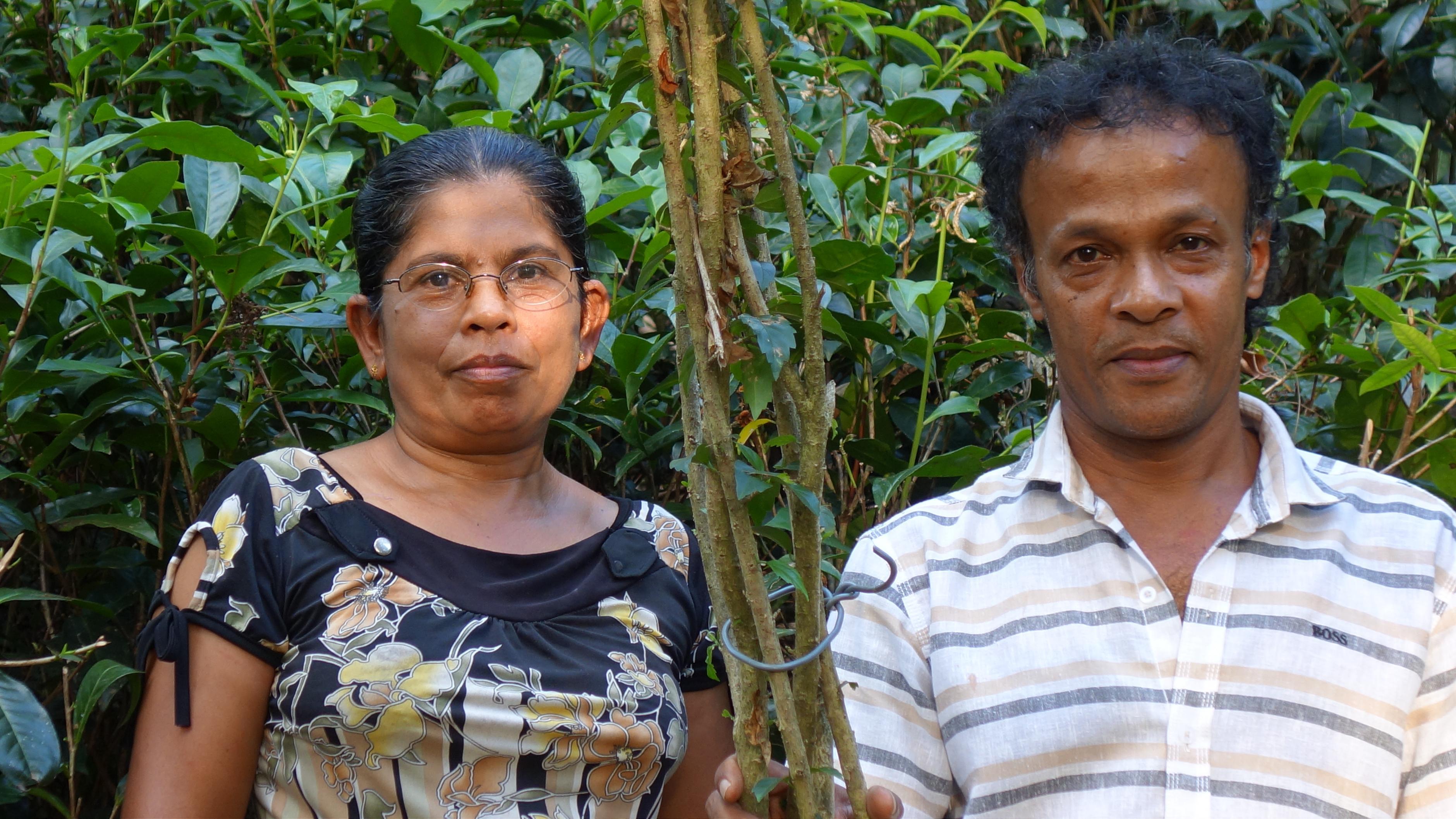 Das Ehepaar Dayananda gehört zu den 750 Kleinbauernfamilien, die auf biologische Anbaumethoden umstellen.