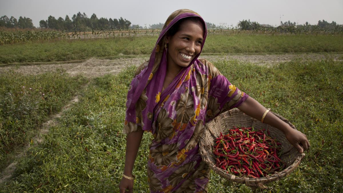 Joygun Islam aus Gaibandha im Norden von Bangladesch gehört einer Vereinigung von Chiliproduzent/innen an.
