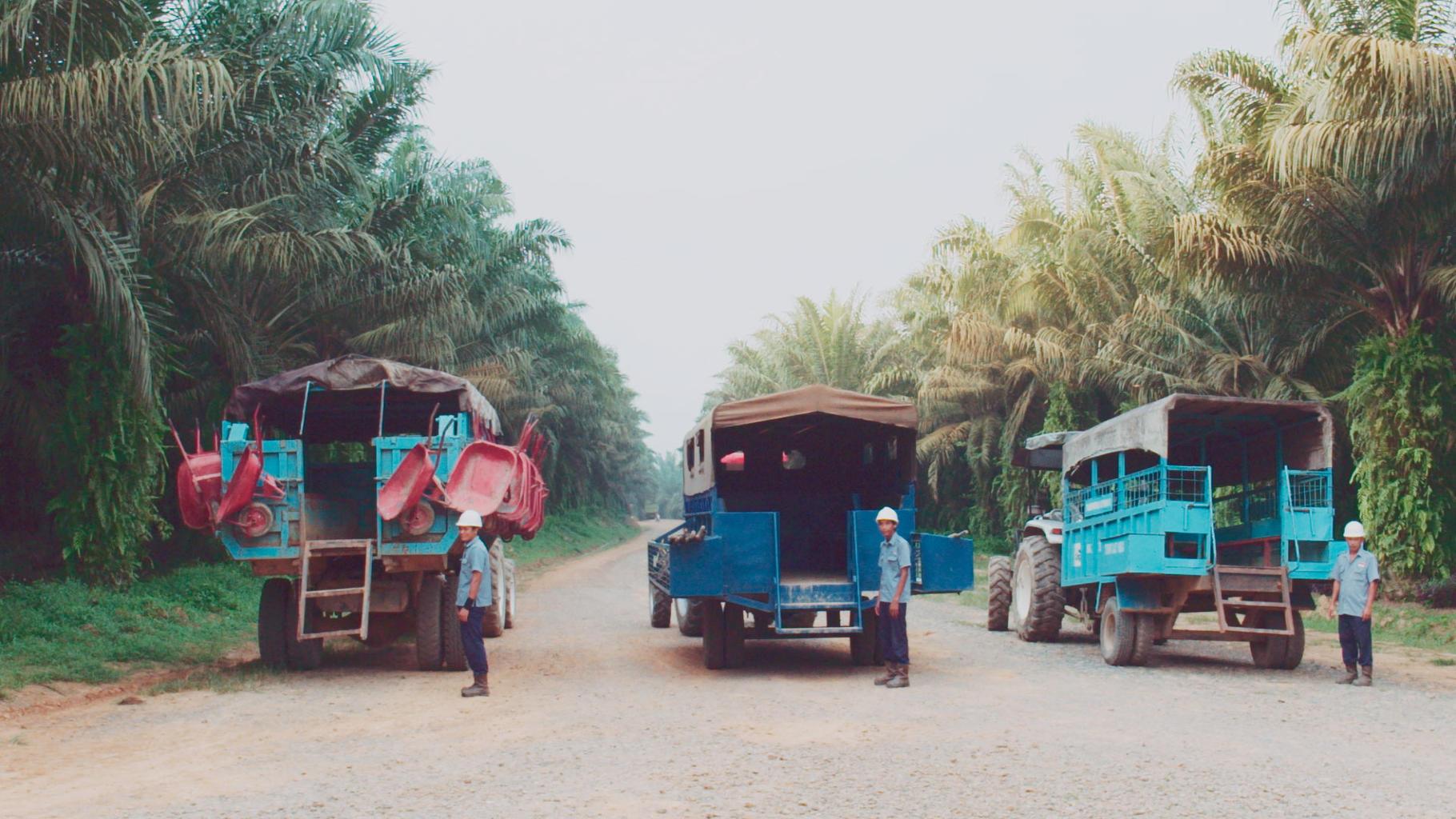 Indonesien: Arbeiter auf dem Weg zur Palmöl-Plantage von Cargill © Movienet Film
