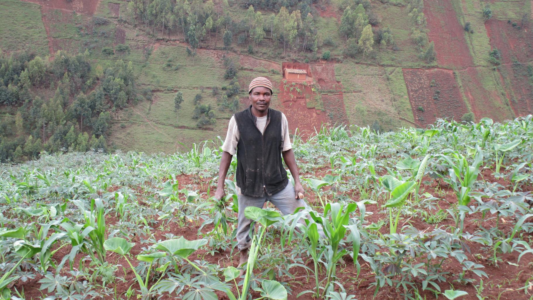 Ein Bauer steht in einem Feld an einem steilen Hang