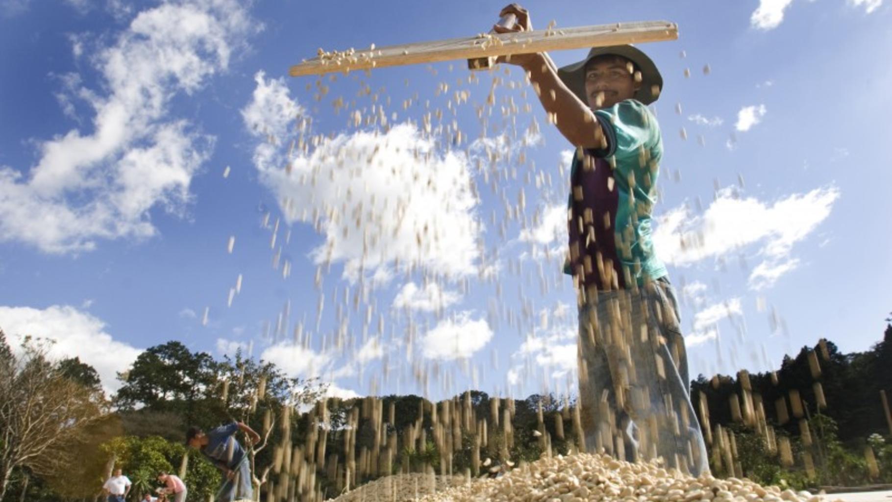 Foto: Drei Viertel der Hungernden und zwei Drittel der Armen leben auf dem Land.