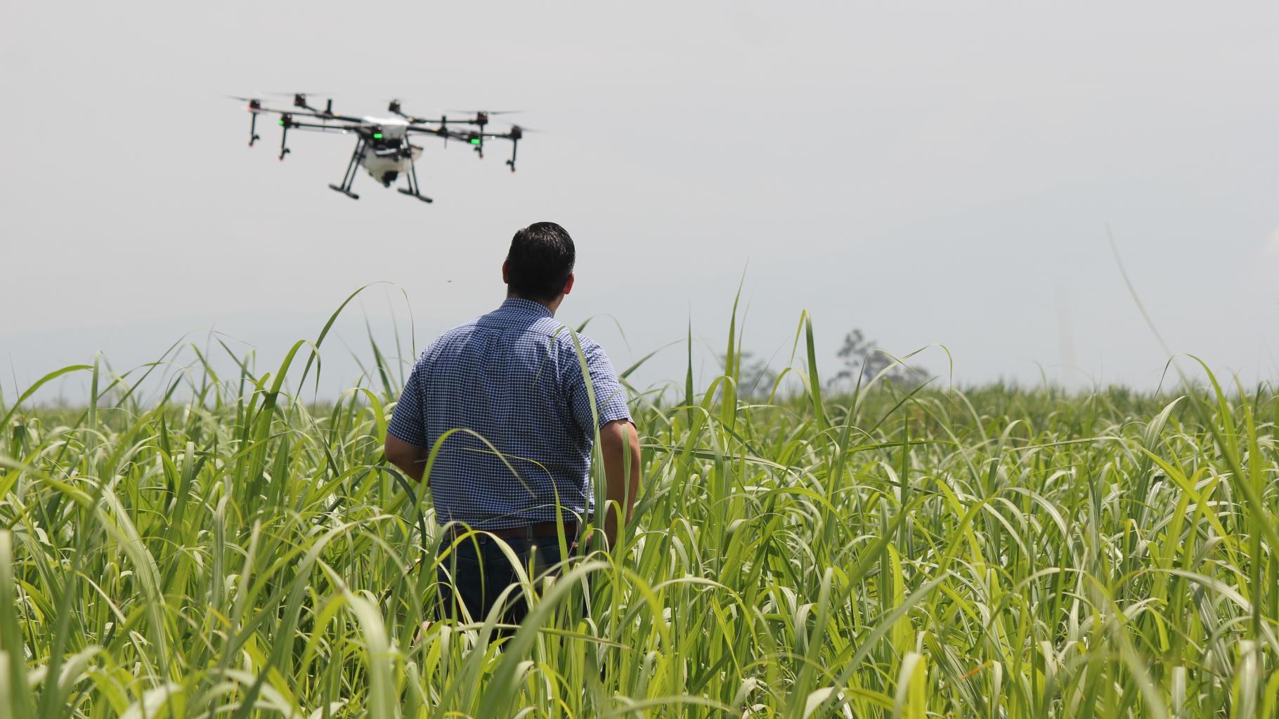 Ein Mann beobachtet eine Drohne, die über einem Feld fliegt.