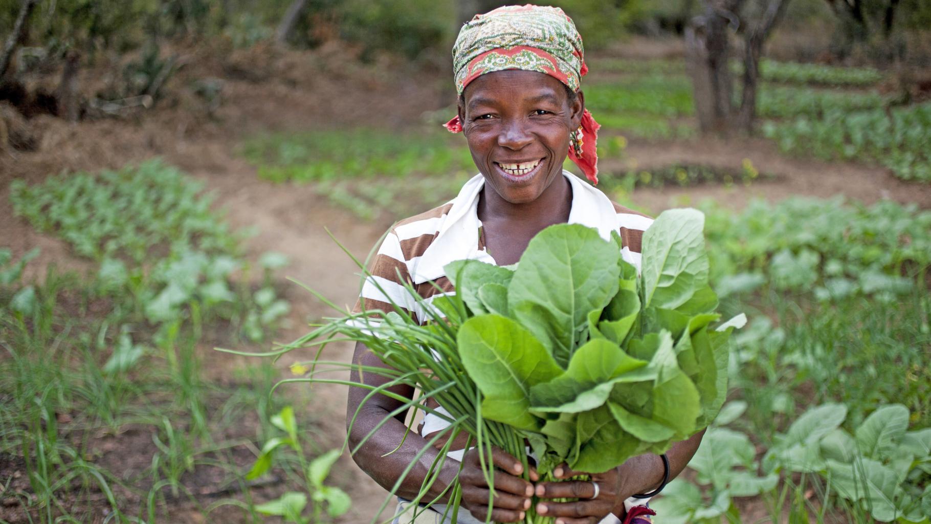 Ernährung, Frau im Gemüsegarten in Mosambik