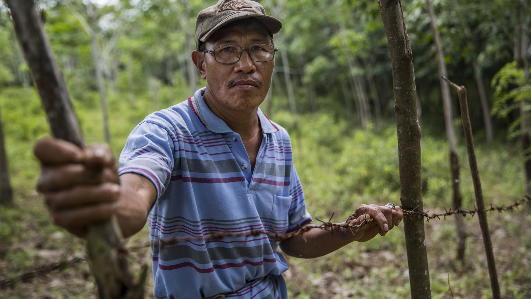 Ein Mann steht an einem Stacheldraht, im Hintergrund teilweise gerodeter Wald