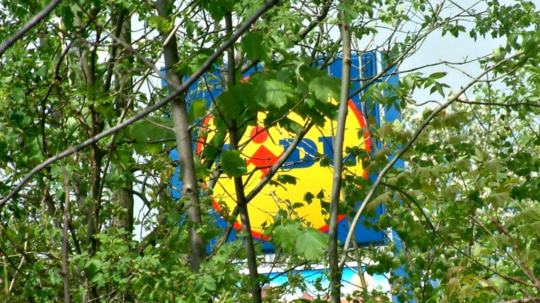 Lidl versteckt sich - hier hinter Bäumen