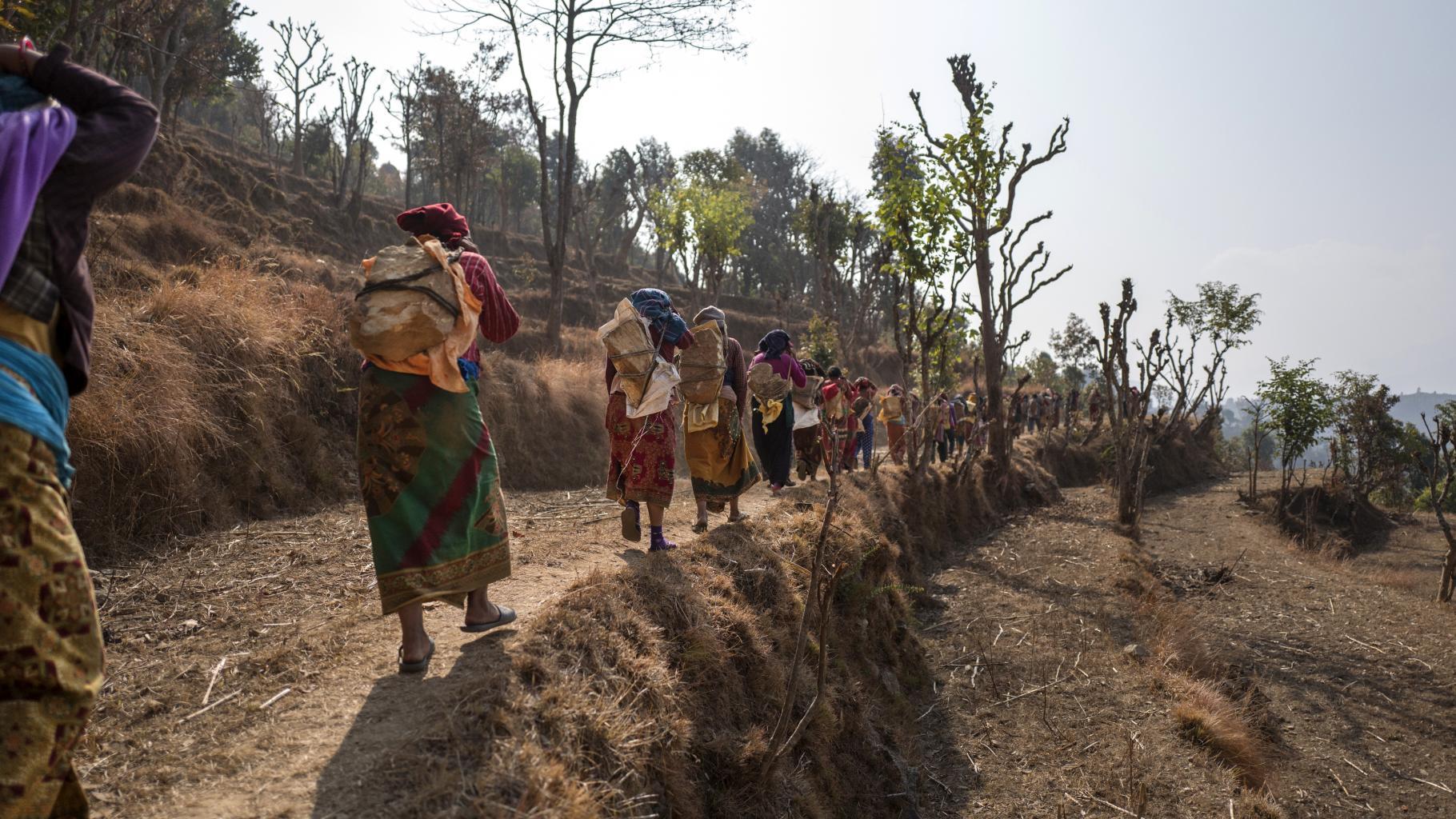 Frauen gehen, große Steine auf dem Rücken tragend, hintereinander auf einem Pfad.