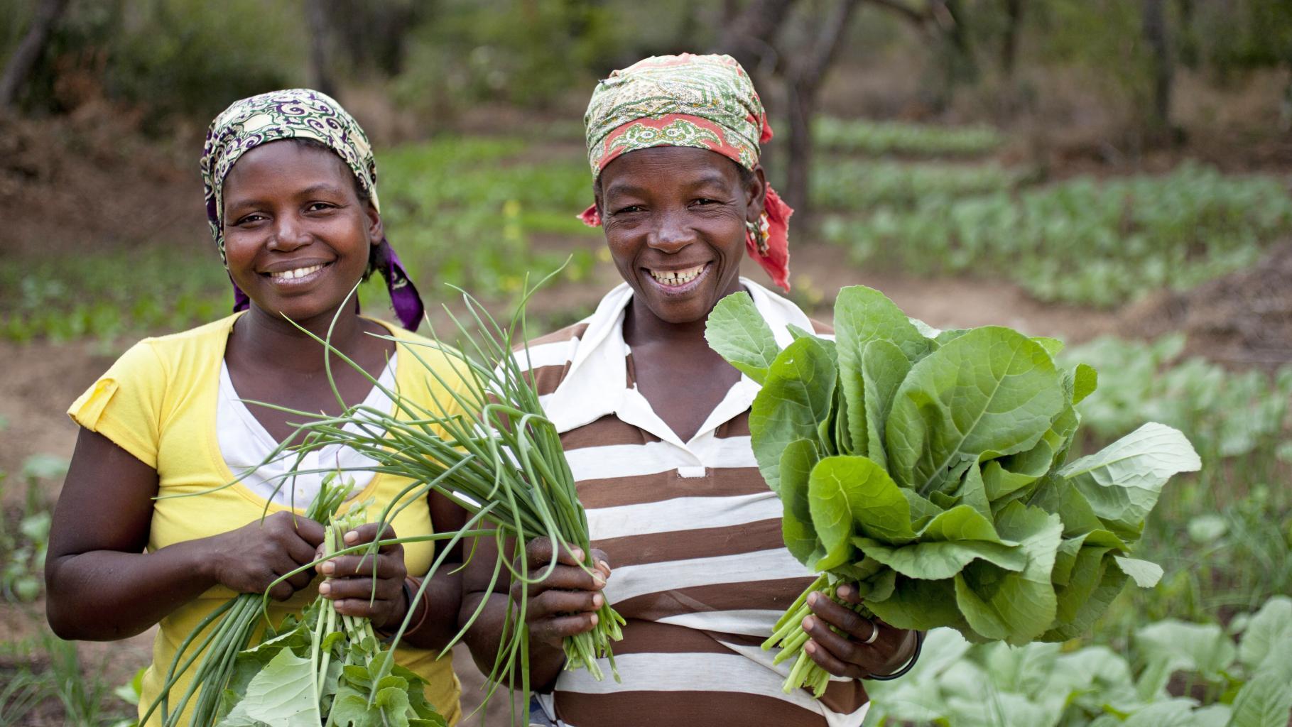 Frauen mit ihrer Ernte in Mosambik