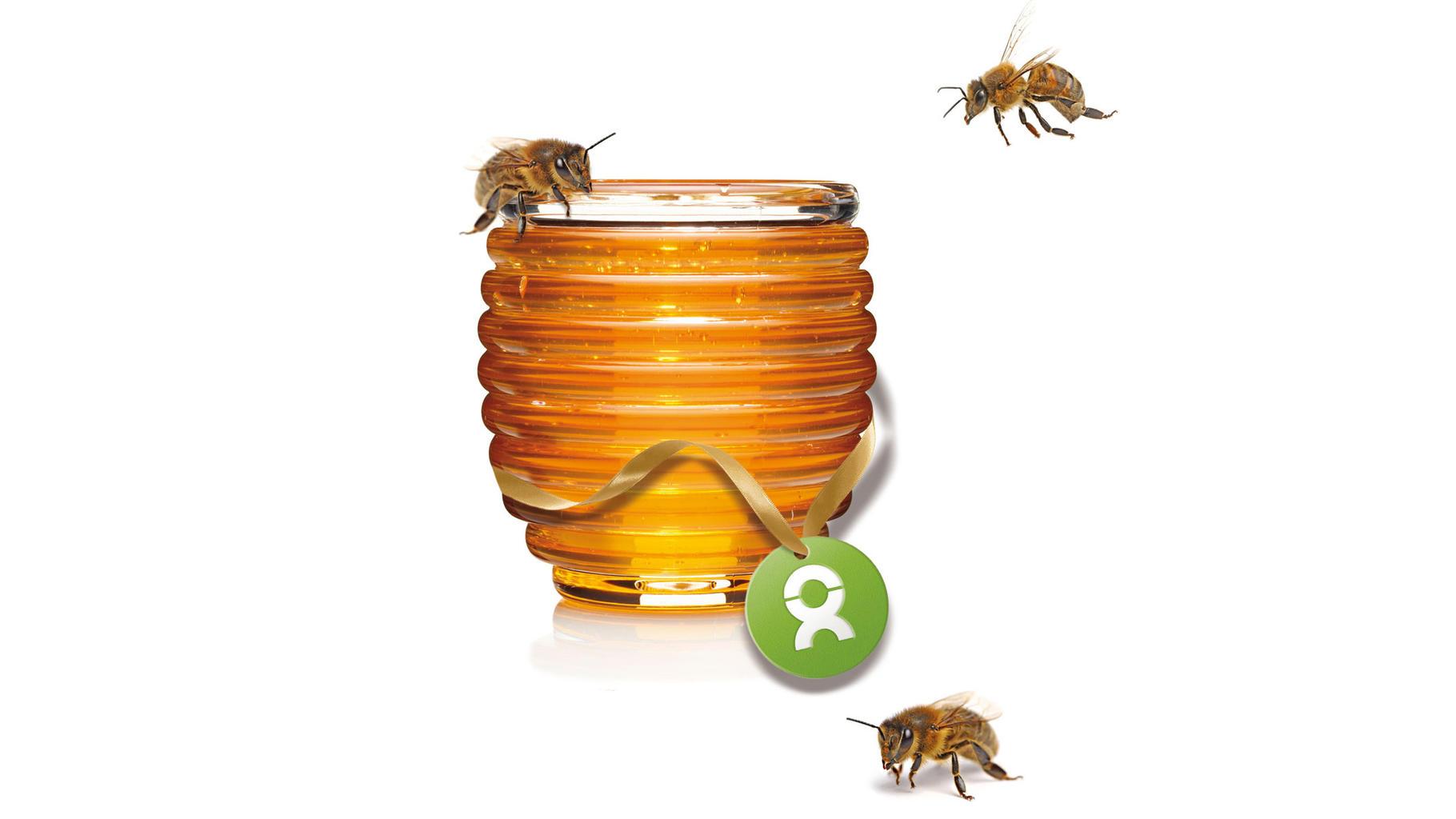 OxfamUnverpackt Honigbienen