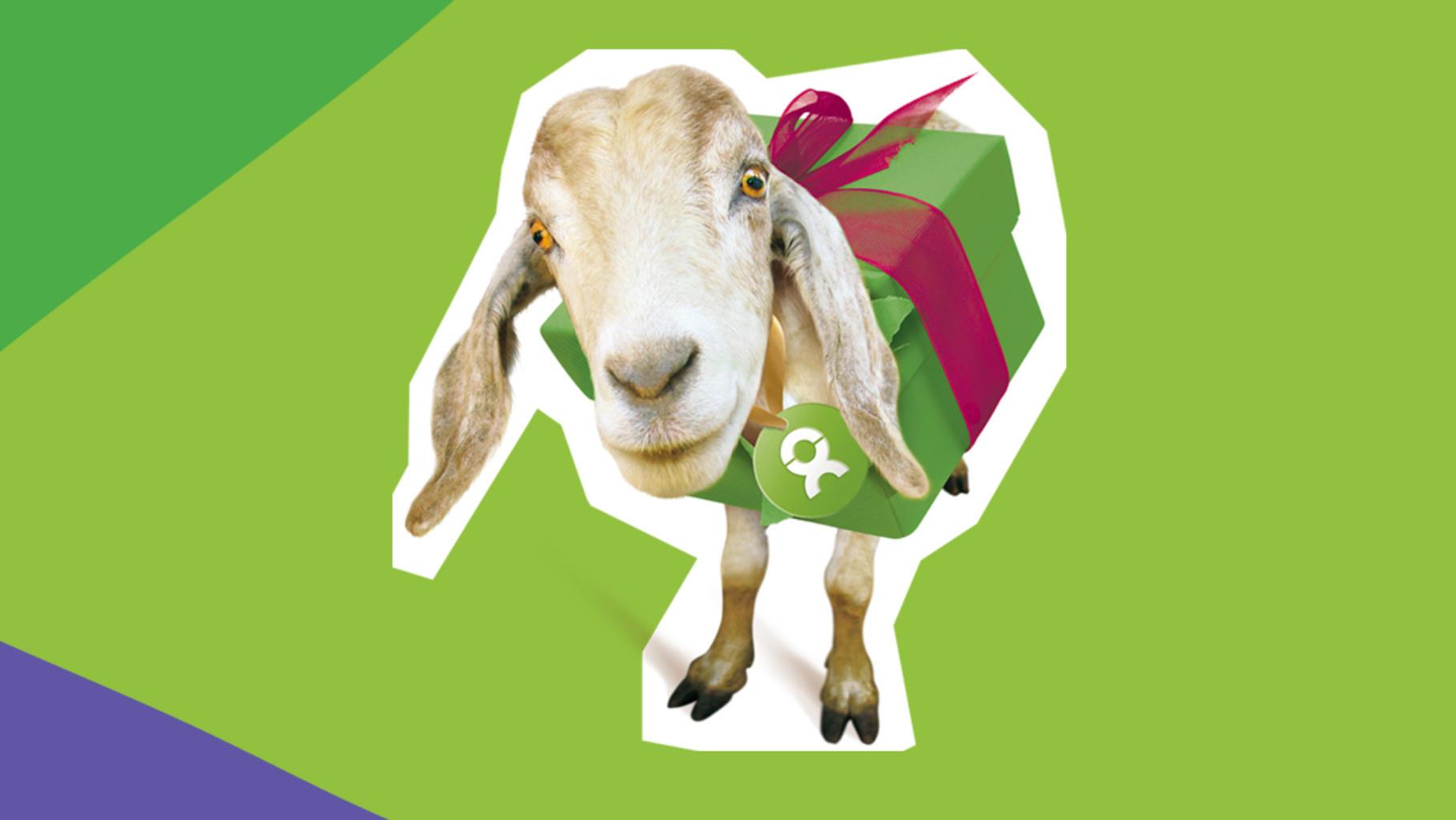 OxfamUnverpackt Ziege