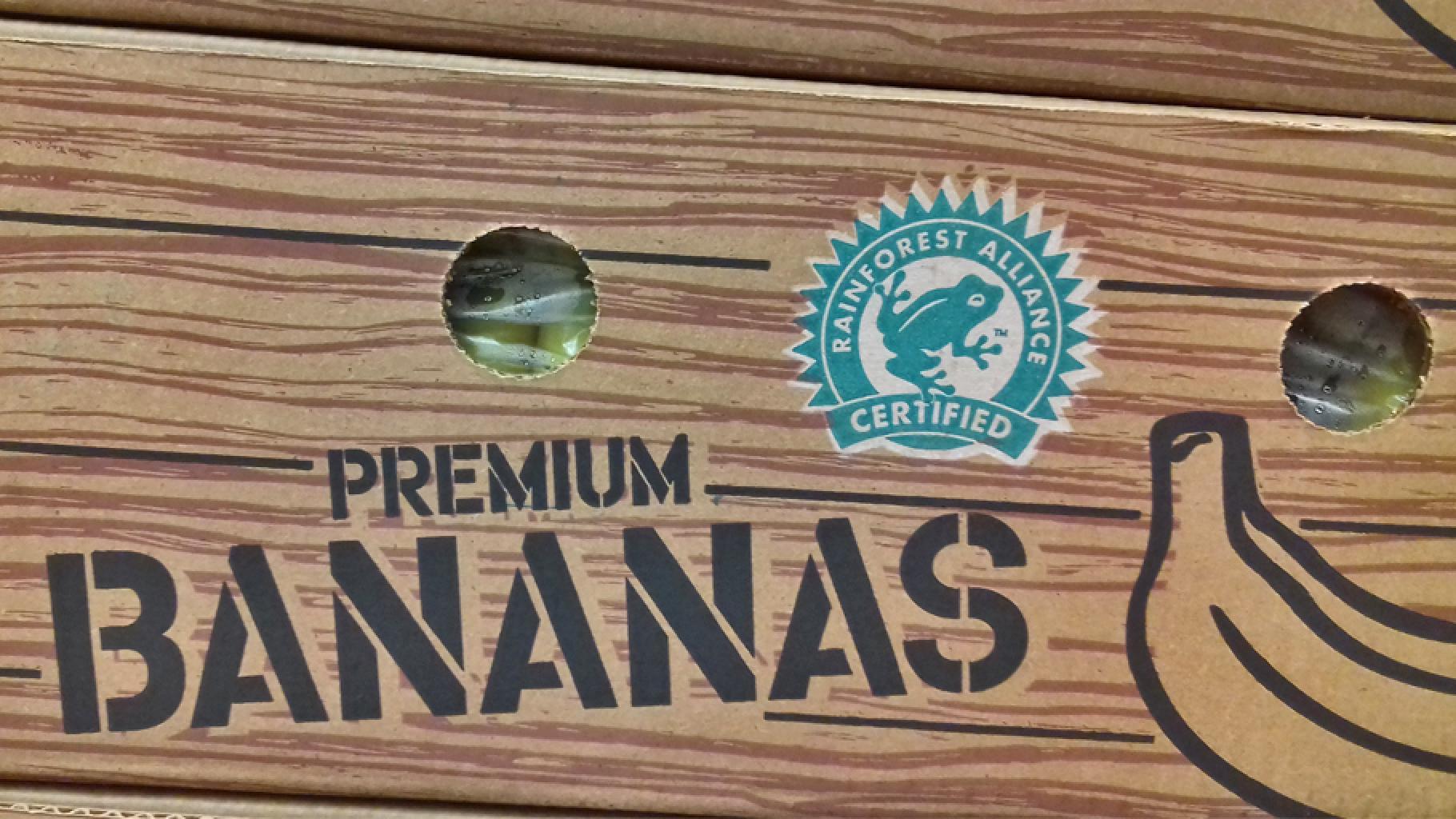 Zertifizierungsprozess Rainforest Alliance Bananen Packung Lidl