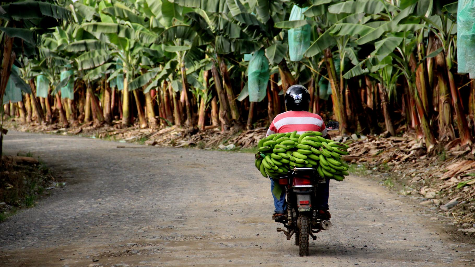 Motorradfahrer in Ecuador