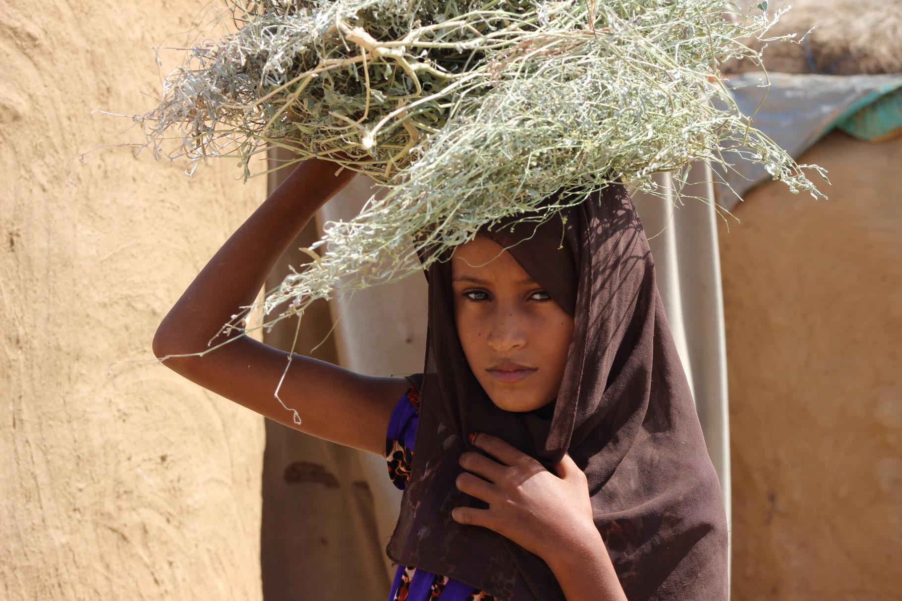 Die 9-jährige Aisha sammelt Holz, damit ihre Familie kochen kann.