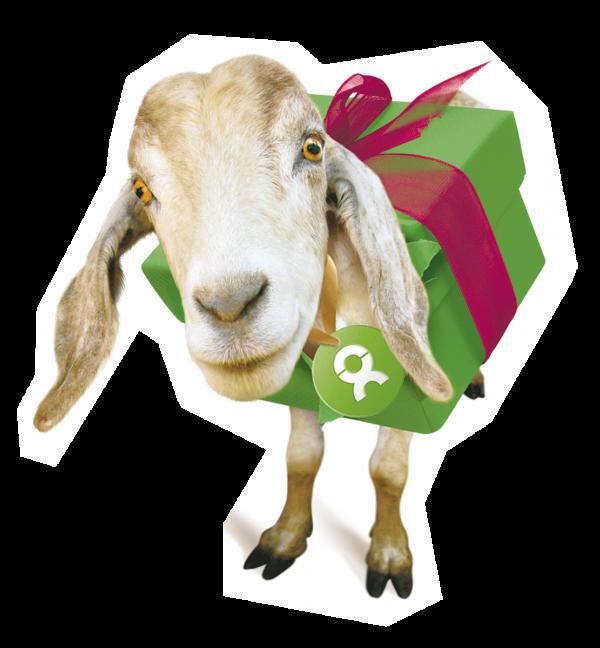 OxfamUnverpackt Ziege Rand